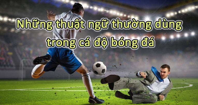 Những thuật ngữ thường dùng trong cá độ bóng đá